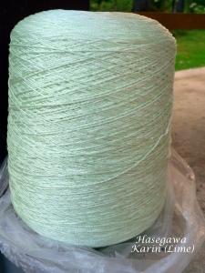 Hasegawa silk T28 Lime